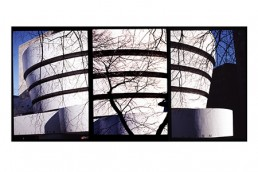 COLLAGE: SOLOMON R.GUGGENHEIM MUSEM, NEW YORK- ARCH.FRANK LIOYD WRIGHT
