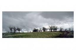ROSA MARINIELLO - ITINERARIO DI UN VIAGGIO: Paesaggio Lucano